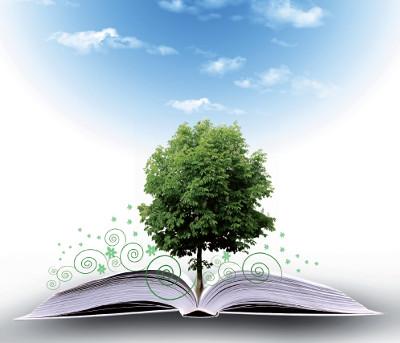 drzewo_prz_maly
